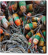 Organised Chaos Acrylic Print by Elena Nosyreva