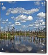Orlando Wetlands Cloudscape 3 Acrylic Print by Mike Reid