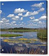 Orlando Wetlands Park Cloudscape 4 Acrylic Print by Mike Reid