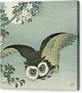 Owl - Moon - Cherry Blossoms Acrylic Print by Pg Reproductions