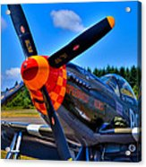 P-51 Mustang - Speedball Alice Acrylic Print by David Patterson