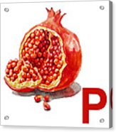 P Art Alphabet For Kids Room Acrylic Print by Irina Sztukowski