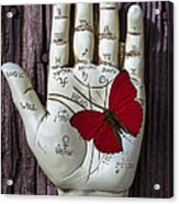 Palm Reading Hand And Butterfly Acrylic Print by Garry Gay