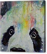Panda Rainbow Acrylic Print by Michael Creese
