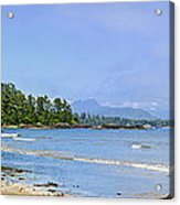 Panorama Of Pacific Coast On Vancouver Island Acrylic Print by Elena Elisseeva