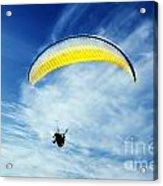 Paraglider Acrylic Print by Jelena Jovanovic