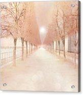 Paris Tuileries Row Of Trees - Paris Jardin Des Tuileries Dreamy Park Landscape  Acrylic Print by Kathy Fornal