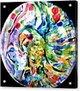 Parrot Plate  Acrylic Print by Martha Nelson