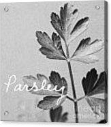 Parsley Acrylic Print by Linda Woods
