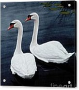 Partners Acrylic Print by Michael Swanson