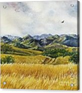 Patagonia Just Down The Valley Acrylic Print by Summer Celeste
