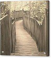 Pathway Acrylic Print by Melissa Petrey