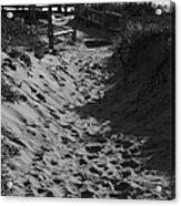 Pathway Through The Dunes Acrylic Print by Luke Moore