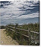 Pathway To The Sea Acrylic Print by Tom Gari Gallery-Three-Photography