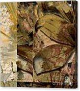 Peace II Acrylic Print by Yanni Theodorou