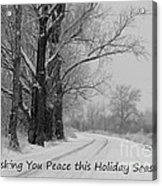 Peaceful Holiday Card Acrylic Print by Carol Groenen