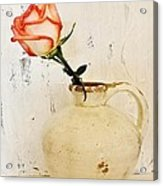Peach Trim Rose In Pottery Acrylic Print by Marsha Heiken