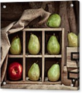 Pears On Display Still Life Acrylic Print by Tom Mc Nemar