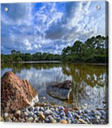 Pebble Beach Acrylic Print by Debra and Dave Vanderlaan