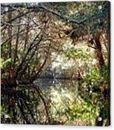 Pepper Creek Acrylic Print by Sheri McLeroy