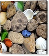 Petoskey Stones Lll Acrylic Print by Michelle Calkins