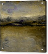 Pewter Skies Acrylic Print by Michelle Calkins