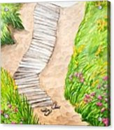 Philbin Beach Path Acrylic Print by Michelle Wiarda