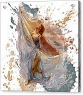 Phoenix Acrylic Print by Alison Schmidt Carson