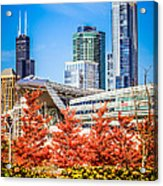 Picture Of Chicago In Autumn Acrylic Print by Paul Velgos