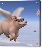 Pigs Fly 1 Acrylic Print by Mike McGlothlen
