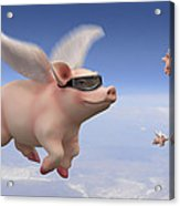 Pigs Fly Acrylic Print by Mike McGlothlen
