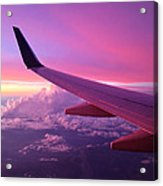 Pink Flight Acrylic Print by Chad Dutson