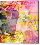 Pink Vineyard Plumps Acrylic Print by PainterArtist FIN