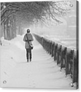 Pioneering The Alley - Featured 3 Acrylic Print by Alexander Senin