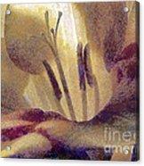 Pistils Acrylic Print by Odon Czintos