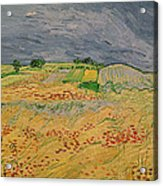 Plain At Auvers Acrylic Print by Vincent Van Gogh