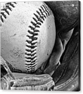 Play Ball Acrylic Print by Don Schwartz
