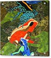 Poison Dart Frogs Acrylic Print by Lynda K Boardman