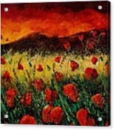 Poppies 68 Acrylic Print by Pol Ledent
