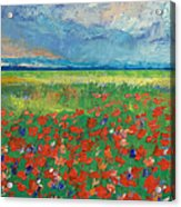 Poppy Field Acrylic Print by Michael Creese