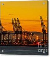 Port Of Felixstowe Acrylic Print by Svetlana Sewell