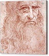 Portrait Of A Bearded Man Acrylic Print by Leonardo da Vinci