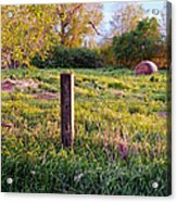 Post And Haybale Acrylic Print by Tracy Salava