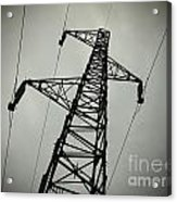 Power Pole Acrylic Print by Bernard Jaubert