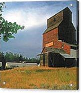 Prairie Sentinel Acrylic Print by Terry Reynoldson