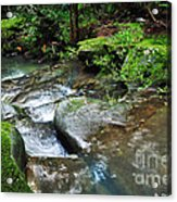 Pretty Green Creek Acrylic Print by Kaye Menner