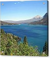 Pretty In Teal Acrylic Print by Mike Podhorzer