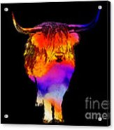 Psychedelic Bovine Acrylic Print by Pixel Chimp