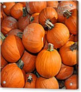 Pumpkins Acrylic Print by Diane Lent