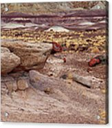 Purple Earth Acrylic Print by James Peterson